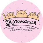 "ул. Горького, 123<br />Instagram:<a href=""https://www.instagram.com/cat_cafe_kotomania/"" target=""_blank""> cat_cafe_kotomania</a>"